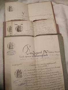 Set of French documents  xo--FleaingFrance