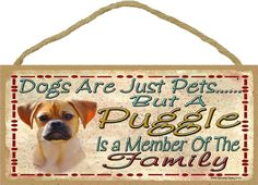 Dogs Are Just Pets But A PUGGLE is A Member by blackwatertradingco