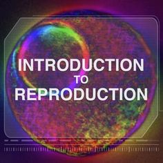 Learn Introduction to Reproduction from Northwestern University. Do you have questions about sex hormones or menstrual cycles? This is a crash-course in human reproductive health through fact and biology-based information on a variety of topics. Human Anatomy And Physiology, Northwestern University, Clinic Design, Hard Workout, Online Tutoring, Pregnancy Workout, Essay Writing, Biology, Learning