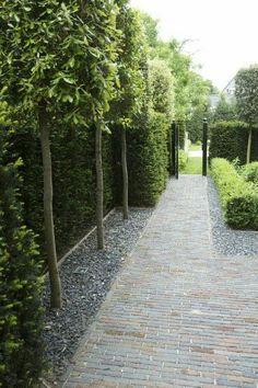 Minimalist Garden Design Ideas For Small Garden - Garten Modern Landscaping, Outdoor Landscaping, Front Yard Landscaping, Landscaping Ideas, Backyard Privacy, Backyard Ideas, Acreage Landscaping, Privacy Trees, Privacy Landscaping