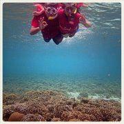 nice underwater picture