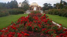 Exposition Park Rose Garden -  701 State Dr, Los Angeles, CA 90037