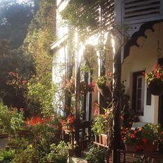 Sunnymead in Shimla