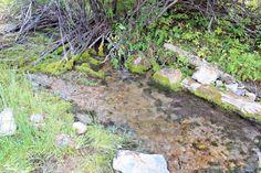 Montana Gold Mine 20 ac Dredge Placer Claim on Trout Creek Beaverhead, Dillon MT