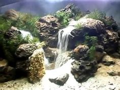 1000 images about aquariums on pinterest aquascaping for Aquarium waterfall decoration
