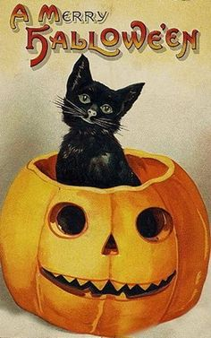 vintage-Halloween-black-cat-pumpkin-card Free Printable from vintageholidaycrafts.com