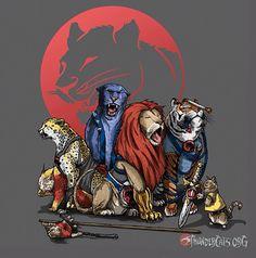 The real Thundercats