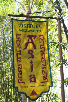 Here is an overview of Asia in the Animal Kingdom and what attractions you will find there.