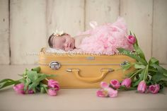 This is absolutely gorgeous!!  I love Heidi Hope Photography
