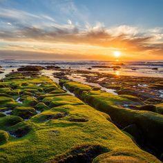 Pacific ocean green rocks #iPad #Air #Wallpaper | More   retina iPad wallpapers in :http://www.ilikewallpaper.net/.
