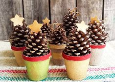 Here's a festive and inexpensive small-space decorating idea: take a sleeve of peat pots, paint them in shades of red, green and gold, add found pine cones and craft star embellishments. Cluster the mini-trees on a mantel or entry table. Click through for more holiday inspiration from The Home Depot Garden Club.