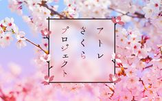 アトレさくらプロジェクト Web Design, Web Banner Design, Book Design, Layout Design, Flyer Design, Aloe Vera Creme, Japan Graphic Design, Typography Layout, Spring Design