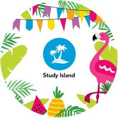 4 Ways to Keep Students Learning This Summer with Study Island Study Island, One Image, Math Skills, Student Learning, Elementary Schools, Classroom Ideas, Students, Summer, Summer Time