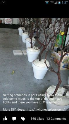 branches in pots using spray foam ~ Add some moss to the top of the foam add lights and there you have it.Cheap decorsetting branches in pots using spray foam ~ Add some moss to the top of the foam add lights and there you have it. Rama Seca, Christmas Crafts, Christmas Decorations, Christmas Lights, Winter Wonderland Decorations, Christmas Branches, Winter Wonderland Wedding, Christmas Porch, Christmas 2014