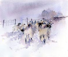 Snowbound Flock - Rachel McNaughton