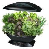 Aerogarden for most popular herb collection for gourmet home cooking.