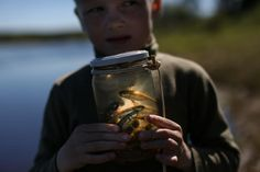 A boy in the village of Laikovo, on the Izhma River, studies small fishes caught in a jar, which he lured in with breadcrumbs. May 2014.