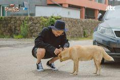Má ơi giờ hổng lẽ đi gato với con chó à, gato gato ngập mặt. Chanyeol đi show và bị dân đảo Jeju phủ vs bơ toàn tập