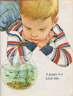 The Little Book, Illustrations by Eloise Wilkin, 1969- Guppies