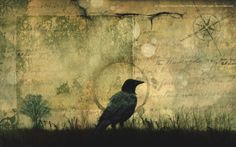 thoth-ordo-ab-chao:  Crows could be the key to understanding alien intelligence We've studied brain structure pretty extensively in mammals from humans and apes to whales and mice. But German neuroscientists Lena Veit and Andreas Nieder are the first to watch what happens in crow brains as these birds worked their way through a series of brain-teasers. They actually wired the crows' brains up with electrodes, watching as individual neurons fired when the crows did a test that required…