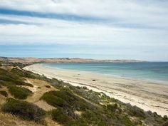 Aldinga Beach Adelaide city • visit South Australia • Adelaide's beaches