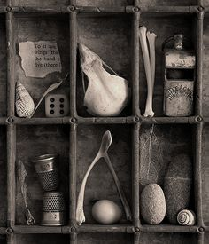 Assemblage and salvage Found Object Art, Found Art, Joseph Cornell Boxes, Collections Of Objects, Displaying Collections, Assemblage Art, Box Art, Art Boxes, Shadow Box
