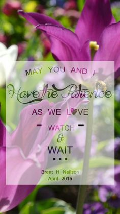 """LDS cell phone wallpaper. LDS general conference quote. Brent Haha Neilson. April 2015 """"May you and I have the patience as we love, watch and wait"""" LDS quotes"""
