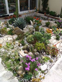 Ez garden | Flickr – Compartilhamento de fotos!