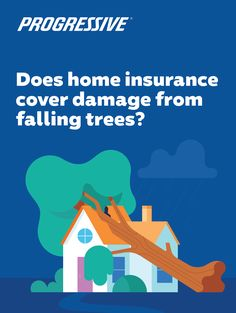 Tree Falls On House - Does Insurance Cover It? Progressive Auto, Progressive Insurance, Insurance Quotes, Home Insurance, Financial Tips, Autumn Trees, Diy Design, Fall, Cover