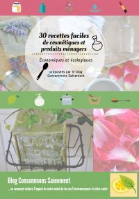 Homemade Cosmetics, Diy Cleaning Products, Diy Beauty, Booklet, How To Plan, How To Make, Frugal, Helpful Hints, Budgeting