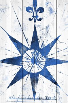 Vintage Compass Graphic Art on Wood Planks in White