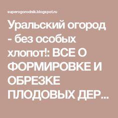Уральский огород - без особых хлопот!: ВСЕ О ФОРМИРОВКЕ И ОБРЕЗКЕ ПЛОДОВЫХ ДЕРЕВЬЕВ!