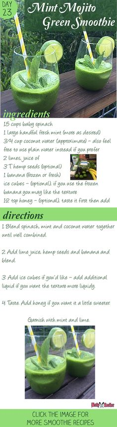 Try this delicious Mint Mojito Green Smoothie - (virgin) -so good and super easy! Repin to try! Click for more Smoothie Recipes!