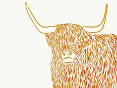 Highland Cow #graphicky #highladcow