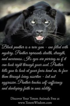 Animal Spirit Guide Totem- Black Panther