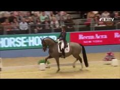 Watch Charlotte Dujardin and Valegro Break Their Own World Record (Again) | Eventing Nation - Three-Day Eventing News, Results, Videos, and Commentary