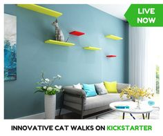 LIVE NOW. Newest product on Kickstarter. This Cat Walks will transform the way your cats live at home. Check it out!