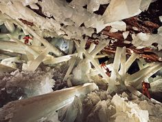 Chihuahua, Mexico:Cave of Crystals  This doesn't even look real, but those are selenite beams and those are real humans!