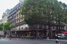 Paris - Dia 4: Sainte-Chapelle, Notre-Dame, Shakespeare & Company e Jardim de Luxemburgo | Cidade das Cerejas