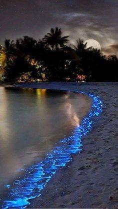 Beautiful Moon, Beautiful Beaches, Beautiful World, Amazing Photography, Landscape Photography, Nature Photography, Nature Pictures, Beautiful Pictures, Moon Pictures