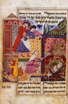 palestine essays