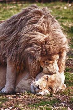 Luvs ya babe ❤️❤️