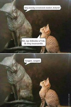 Sad And Useless Humor Site Cute Funny Animals, Funny Animal Pictures, Funny Cute, Funny Images, The Funny, Animal Pics, Memes Humor, Cat Memes, Funny Shit