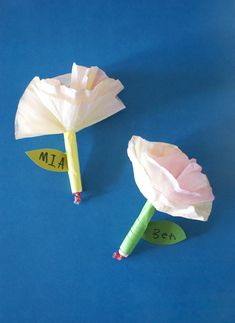 Coffee Filter Flowers for Valentines