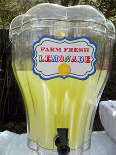 Lemonade and food labels for Country Fair birthday party by That Party Chick!  For party details visit www.thatpartychick.net