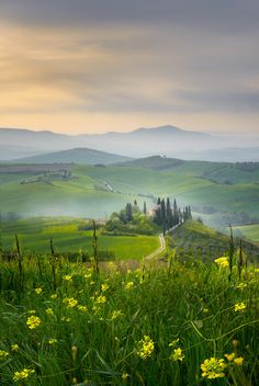 Belvedere by Maciej Bartnicki (Tuscany, Italy) Landscape Photos, Landscape Photography, Nature Photography, Beautiful World, Beautiful Places, Country Backgrounds, All About Italy, Tuscany Landscape, Regions Of Italy