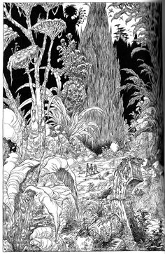 The Deepwoods, black and white line art by Chris Riddell from Chris Riddell and Paul Stewart's series The Edge Chronicles Forest Illustration, Line Illustration, Black And White Lines, White Art, Monochromatic Art, Harry Potter, Dnd Art, Ink Pen Drawings, Tinta China