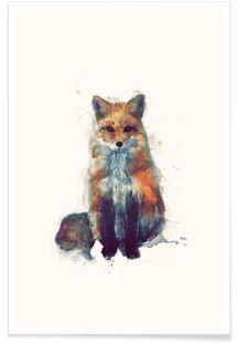 Fox - Amy Hamilton - Affiche premium