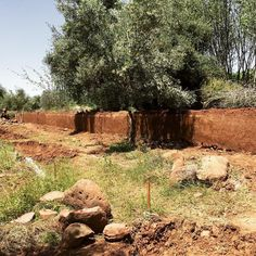 The mud wall is coming to life... . #permaculture #organicfarming #landregeneration #sustainability #earthworks #offthegrid #organicfood #orchard #organic #fruittrees #naturalbuilding #growyourown #naturalarchitecture #sustainablearchitecture #regenerativ