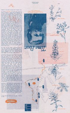 """""""If I were so time poor as to have only one day to spend in Yosemite."""" How best to spend one's Yosemite time, as accounted by John Muir in and retraced. Graphic Design Illustration, Watercolor Illustration, Graphic Art, Editorial Design, Publication Design, Book Design Layout, Graphic Design Inspiration, Artwork, Prints"""